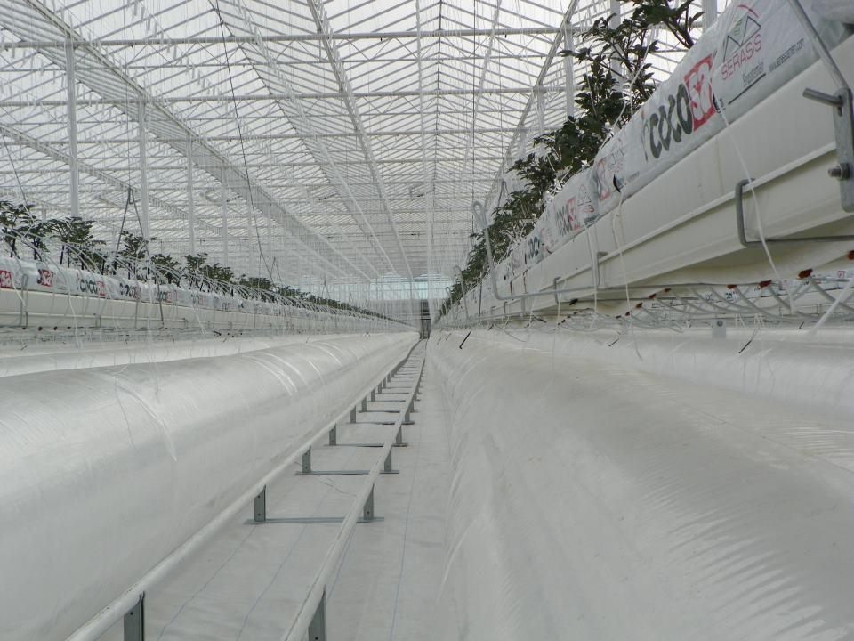 UltraClima planting